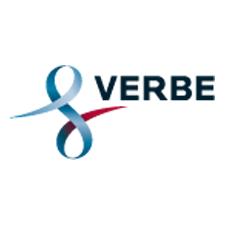 logo_verbe_publicis_consultant