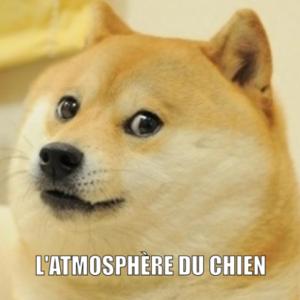 atmosphère_chien_moteur_redaction